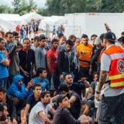 Niemcom zniknęło 5 tys. uchodźców