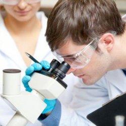 Młodzi polscy naukowcy powalczą o nagrody w Dublinie