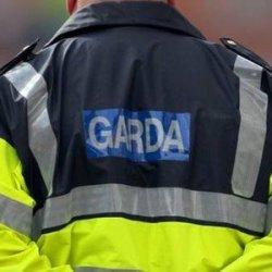 200 nielegalnych imigrantów usuniętych z Irlandii