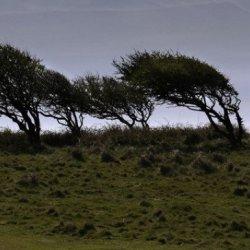 Bardzo silny wiatr nad Irlandią