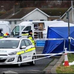 Ciało w kawałkach znalezione w Dublinie