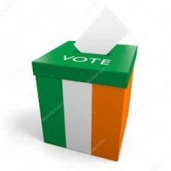 Wybory w Irlandii w lutym