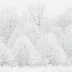 Atak zimy - najmocniejszy w środę i piątek