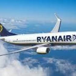 Samolot z Cork zderzył się z ptakiem