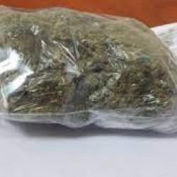 Polak dostanie trzy lata za transport marihuany