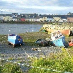 Żywy krajobraz- konferencja w Galway