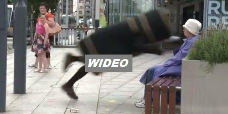 Śmietnik zaatakował starszą panią w południowym Dublinie