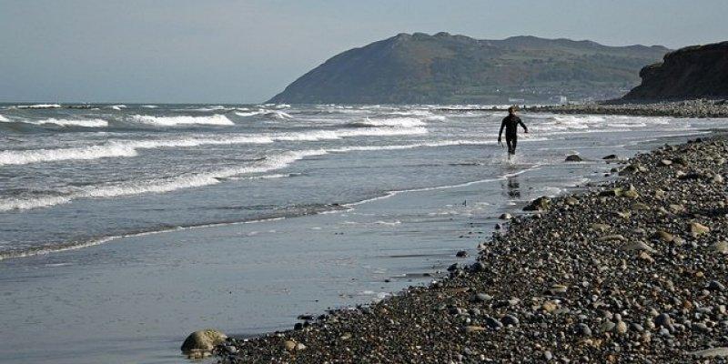 Ludzkie ramię oraz noga znalezione na plażach w Dublinie