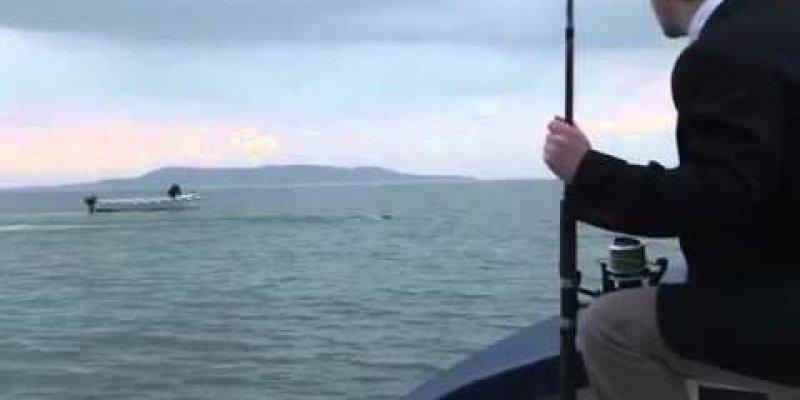 Potwór w zatoce Lough Foyle