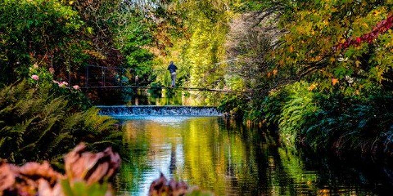 Dublińskie ogrody udostępnione do zwiedzania