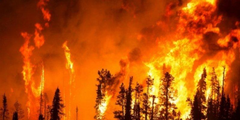 Cała Irlandia zagrożona pożarami