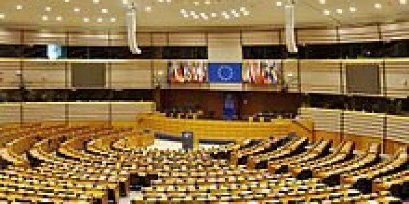 Irlandia wybiera europosłów i zdecyduje o rozwodach