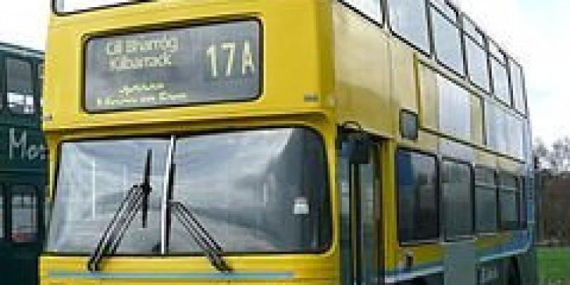 Młodzież przez miesiąc może podróżować po Irlandii za darmo