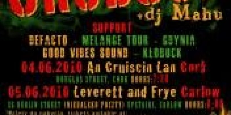 Koncert GrubSon w Irlandii