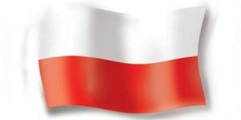 Mniej imigrantów z Polski w Irlandii