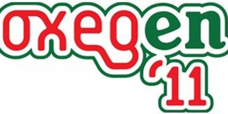 90 aresztowań na Oxegen, największym festiwalu muzycznym w Irlandii.